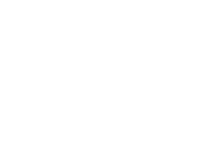 Stories of Lynn